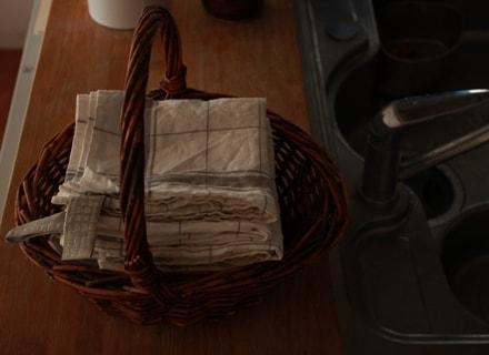 キッチンに置かれたかごに入ったパルマ